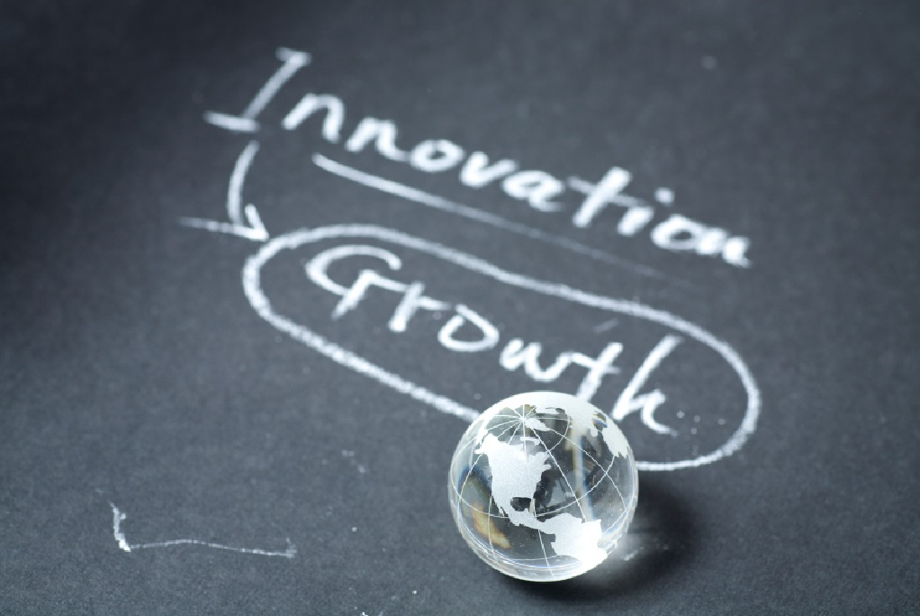 Building an Innovation and Growth Culture